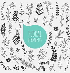 floral elements collection spring flowers vector image