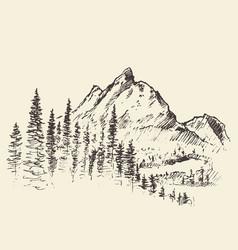 Mountain peak pine forest hand drawn vector
