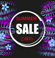 summer advertising template promotional sale vector image