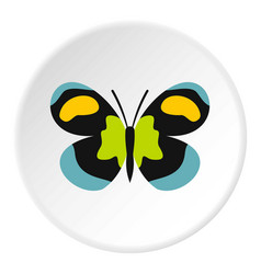 Unusual butterfly icon circle vector