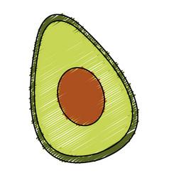 avocado half fresh isolated icon vector image vector image