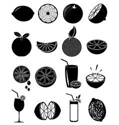 Lime lemon icons set vector image vector image