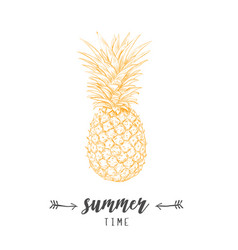 pineapple yellow skech letitering summer vector image vector image