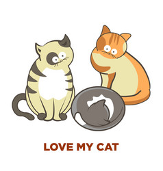 cute cats pets or kittens playing or posing vector image vector image