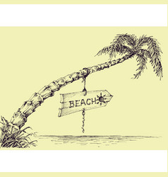 palm tree on the beach wooden board indicating vector image vector image