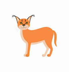 cute animals caracal cartoon wild cat isolated on vector image