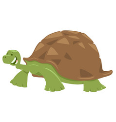 cute turtle or tortoise animal character vector image