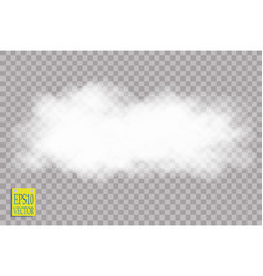 fog or smoke isolated transparent special effect vector image