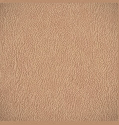 Leather texture horizontal background vector image