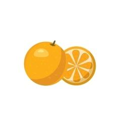 Mandarin icon in cartoon style vector image