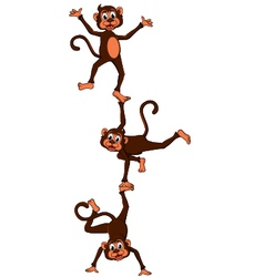 monkeys cartoon attraction vector image