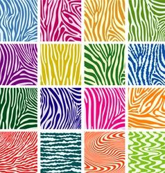skin textures of zebra vector image