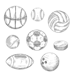 Sporting balls and hockey puck sketch icons vector image