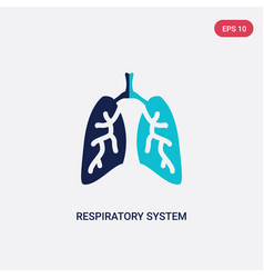 Two color respiratory system icon from human body vector