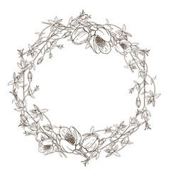 Wreath wild herbal flowers hand drawn vector