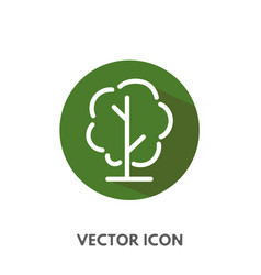 doodle tree icon vector image