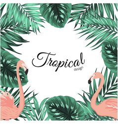 tropical design frame template leaves flamingos vector image vector image
