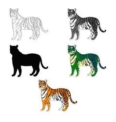 depicting a tiger line vector image vector image