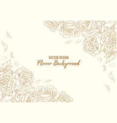 background floral hand drawn rose outline flower vector image