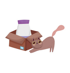 brown cat with food package in cardboard box pets vector image
