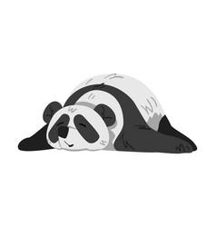 Cute lying panda bear funny adorable wild animal vector