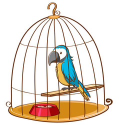Cute parrot in cage on white background vector