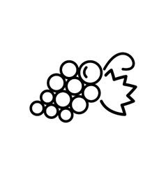 grapes line icon vector image