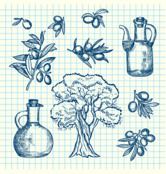 Hand drawn olive branches bottles and tree vector
