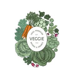 Hand drawn vintage color vegetables design vector