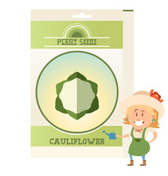 Pack of cauliflower seeds icon vector