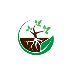 Plant with root in a circle leaf logo design vector