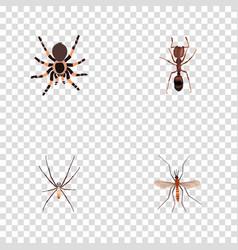 Realistic emmet gnat tarantula and other vector