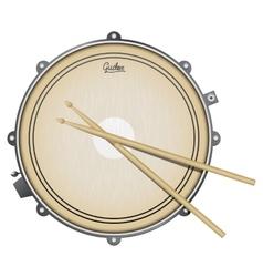 Snare drum realistic vector