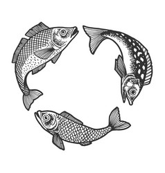 Three fish try swallow each other sketch vector