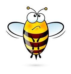 Cartoon bee vector image vector image