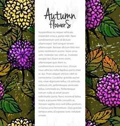 Background with autumn chrysanthemums vector image