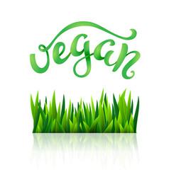 vegan conceptual handwritten phrase vector image