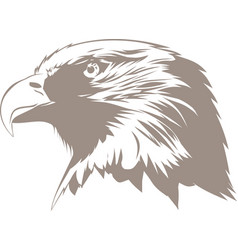Brown eagle vector