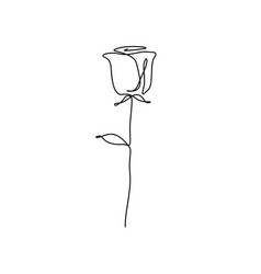 Continuous one line rose flower minimalism vector