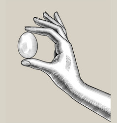 Female hand with an egg vector