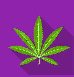Green leaf of hemphippy single icon in flat style vector