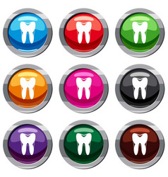 human tooth set 9 collection vector image