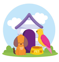 pet dog parrot bowl with food and house vector image