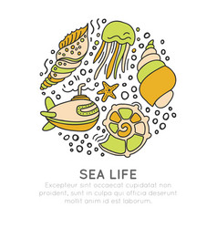 Sealife sketched cartoon concept seashell vector