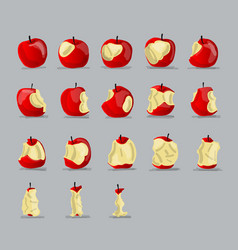 Stages of eating apple sketch for your design vector