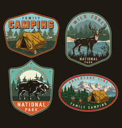 Camping vintage colorful labels vector