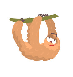 cute cartoon sloth character hanging on a tree vector image