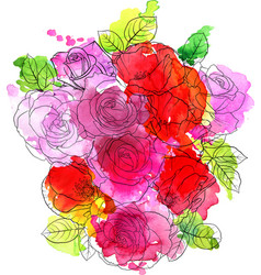 drawing flowers roses vector image