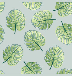 monstera leaf pattern vector image