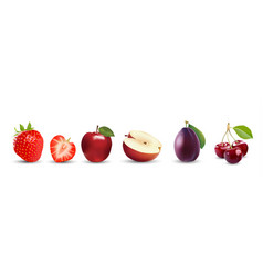 fruit icons strawberry apple plum cherry vector image